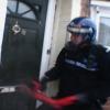 Dangerous dogs police raid leads to cannabis farm