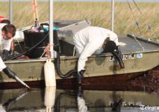 BP oil spill: Bob Dudley will be 'no better than Tony Hayward'